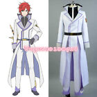 Re:Life in a Different World from Zero Reinhard van Astrea COSplay