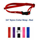 """PetSafe 3/4"""" Collar Strap 2-Hole Nylon Replacement RFA-41-1 w/ Buckle Clasp"""