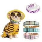 DOG COLLAR DOG TEACUP XS X SMALL PUPPY ADJUSTABLE CHIHUAHUA TOY SMALL CHECK