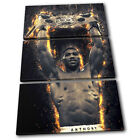 Boxing Anthony Joshua Champion Sports TREBLE CANVAS WALL ART Picture Print