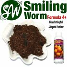 SMILING WORM F4 - Potting Soil Potting Mix + Charcoal - Dwarf Cherry Fruit Tree