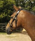Heritage English Leather In Hand Horse Pony Bridle with Stitch Detail and brass