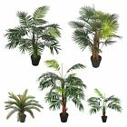 Artificial Palm Tree Plant Arrangement Indoor Home, Office Decor