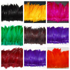 """HACKLE FRINGE Feathers in Many Colors 3-6"""" Height; Halloween/Costume/Trim/Craft"""