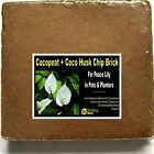 SMILING WORM - Coco Brick 10 Quarts Potting Soil Mix for Peace Lily, Clean Air
