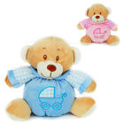 Baby First Teddy Bear Rattle Sound Snuggle Comforter Pink Blue Newborn Soft Toy