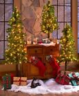 Prelit Christmas Tree Artificial Pine Indoor Outdoor Lighted Holiday Decor  Xmas