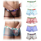 Men's Sheer Mesh Boxer Briefs Shorts Sissy Pouch Panties Gay Underwear Lingeries