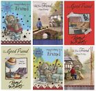 CUTE TRADITIONAL MALE TO A SPECIAL FRIEND BIRTHDAY CARD 1ST P&P VARIOUS DESIGNS