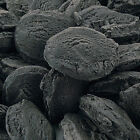 CHARCOAL COBS DOG TREAT BISCUITS CHEWS COMBATS BAD BREATH WIND AIDS DIGESTION