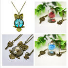 Beauty and the Beast Preserved Flower Owl Bronze Pendant Long Sweater Necklace