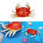 Plastic Fake Artificial Lobster Crab Kids Toy School Taxidermy Photography Props