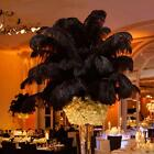 """1~100 PCS Wholesale Quality Natural OSTRICH FEATHERS """"12-14"""" Party Table Decor  фото"""