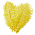 1~100 PCS Wholesale Quality Natural OSTRICH FEATHERS