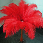 "1~100 PCS Wholesale Quality Natural OSTRICH FEATHERS ""12-14"" Party Table Decor"