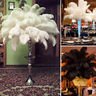 1~100 PCS Wholesale Quality Natural OSTRICH FEATHERS 12-14 Party Table Decor