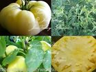White Beauty Heirloom Tomato Seeds Non GMO Beefsteak Delicate Beauty Mild Flavor