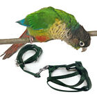 Pet Parrot Traction Strap Outdoor Rope Bird Harness for Cockatiel Random Colour