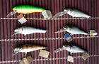 "Bagley's Small Fry 3"", Bass'n Minnow, DB03, Shad Deep, Shad BSD 92. Options!"