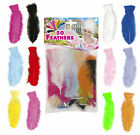 Bag Of 50 Feathers Craft Art Carnival Festival Fancy Dress Costume 12 Colours