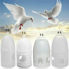 1L/2L/3L/6L Pigeons Feeder Water Pot Container Pet Dispenser Birds Supplies