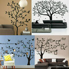 Kyпить Black Family Tree Sticker Wall Decals Removable Vinyl Mural Art DIY Home Decor на еВаy.соm