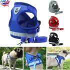 Dog Cat Walk Leash Harness Pet Puppy Rope Chest Strap Vest for Small Medium Dogs