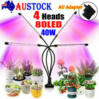 4 Head 40w 80 Led Grow Light Growing Veg Flower Indoor Clip Plant Lamp + Adapter