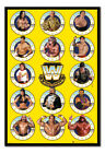 WWE Legends Chrome Poster FRAMED CORK PIN BOARD With Pins | UK Seller