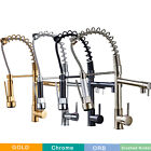 Kitchen Faucet Pull Down Sprayer Sink Swivel Oil Rubbed Bronze Mixer Tap