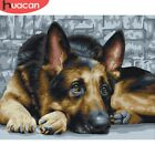 Painting By Number Animal Dog Gift Decoration Home Art DIY Picture
