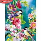 HUACAN Oil Paint By Numbers Bird Decor Home Flower Painting Pictures DIY