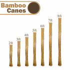 2Ft-8FT Heavy Duty Canes Bamboo Garden Strong Thick Stakes Support Sticks Pole