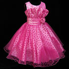 Hot Pinks Beautiful Wedding Pageant Party Flowers Girls Dresses SIZE 2-10 Years
