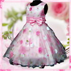 Kids Pink Christmas Wedding Party Flower Girls Pageant Dresses 2-3-4-5-6-7-8-9Y