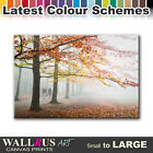 Foggy Forest LANDSCAPES  Canvas Print Framed Photo Picture Wall Artwork WA