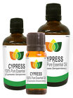 100% Natural Cypress Essential Oil - Multi Size, FREE P&P (Aromatherapy)