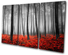 Landscapes Stunning Forest TREBLE CANVAS WALL ART Picture Print VA