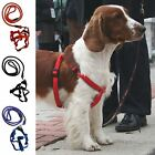 Extra Strong Training Pet Dog Lead Leash Collar Rope + Adjustable Harness
