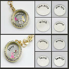 Stainless Steel Plate for 30mm Glass Living Memory Locket Floating Charm Jewerly