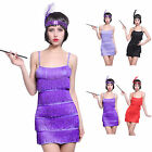 20s 30s Flapper Girl Fringe Costume Charleston Dance Gatsby Fancy Dress