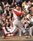 Stan Musial St. Louis Cardinals MLB Action Photo (Select Size)