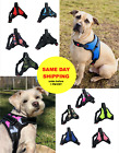Dog Puppy Training Collar - Choke Chain - Guardian Gear - Choose Size