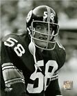 Jack Lambert Pittsburgh Steelers NFL Photo (Select Size)