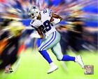 DeMarco Murray Dallas Cowboys 2014 NFL Motion Blast Action Photo (Select Size)