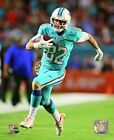 Brian Hartline Miami Dolphins 2014 NFL Action Photo RN085 (Select Size)