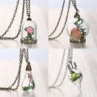 Handmade Retro Real Dried Flower Seagrasses Glass Bottle Chain Necklace Pendant