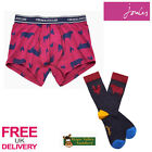 Joules Put A Sock In It Mens Underwear and Socks Set (T) **BNWT**