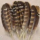 10/20/50PCS 15-20cm Pheasant Wing Feathers For Wedding Decor Millinery Art Craft