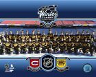Boston Bruins 2016 Winter Classic Formal Team Photo SP176 (Select Size)